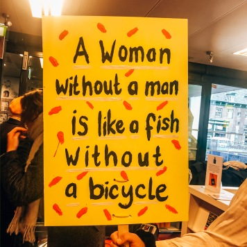 """A woman without a man is like a fish without a bicycle."""